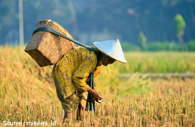 Peringatan Hari Tani Nasional, Reforma Agraria Apa Kabar?