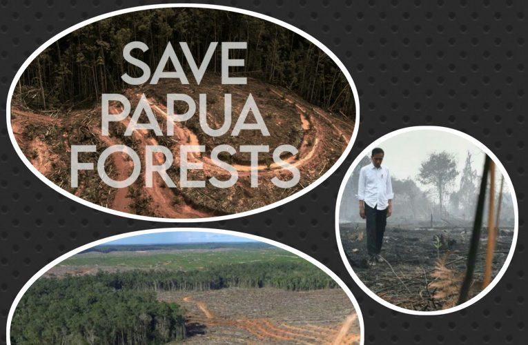 Perusakan Hutan Papua oleh Perusahaan Korea Selatan : Salah Siapa?